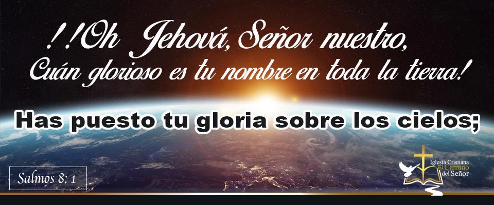banner salmo 8,1